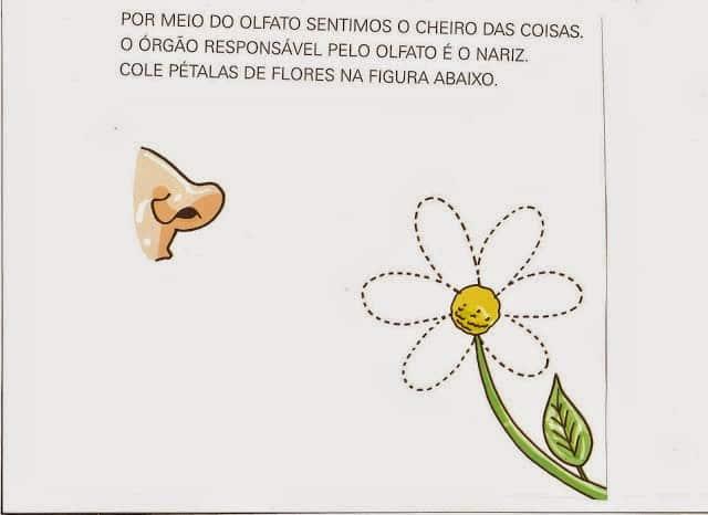 Atividades de primavera para educação infantil maternal podem ser bem interessantes (Foto: espacoeducar.net)