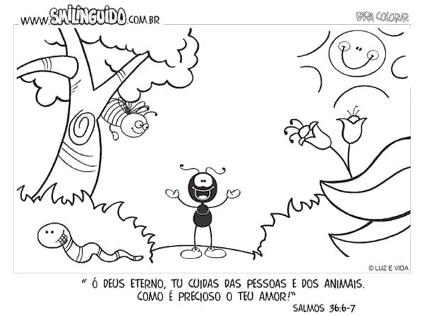 (Foto: pintarcolorir.com.br)
