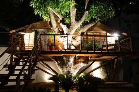 Casa na Árvore para Crianças