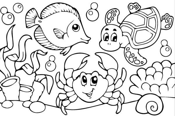 Desenhos Para Pintar: Desenhos Para Pintar Grátis: Barbie, Frozen, Patrulha