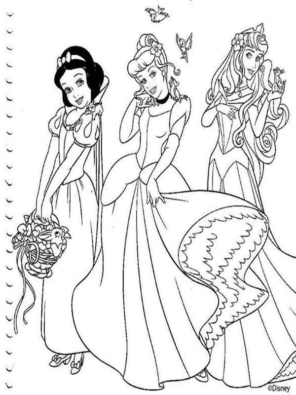 Desenhos para pintar Princesas