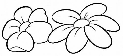 flor pequena