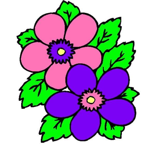 flor colorida
